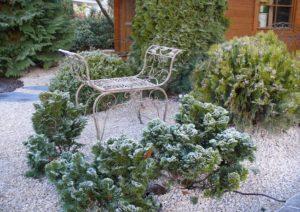 Im Winter (1)