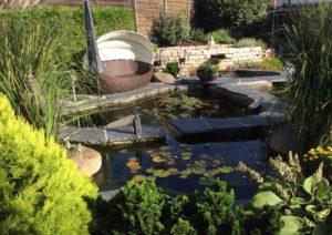 Teichanlage (3)